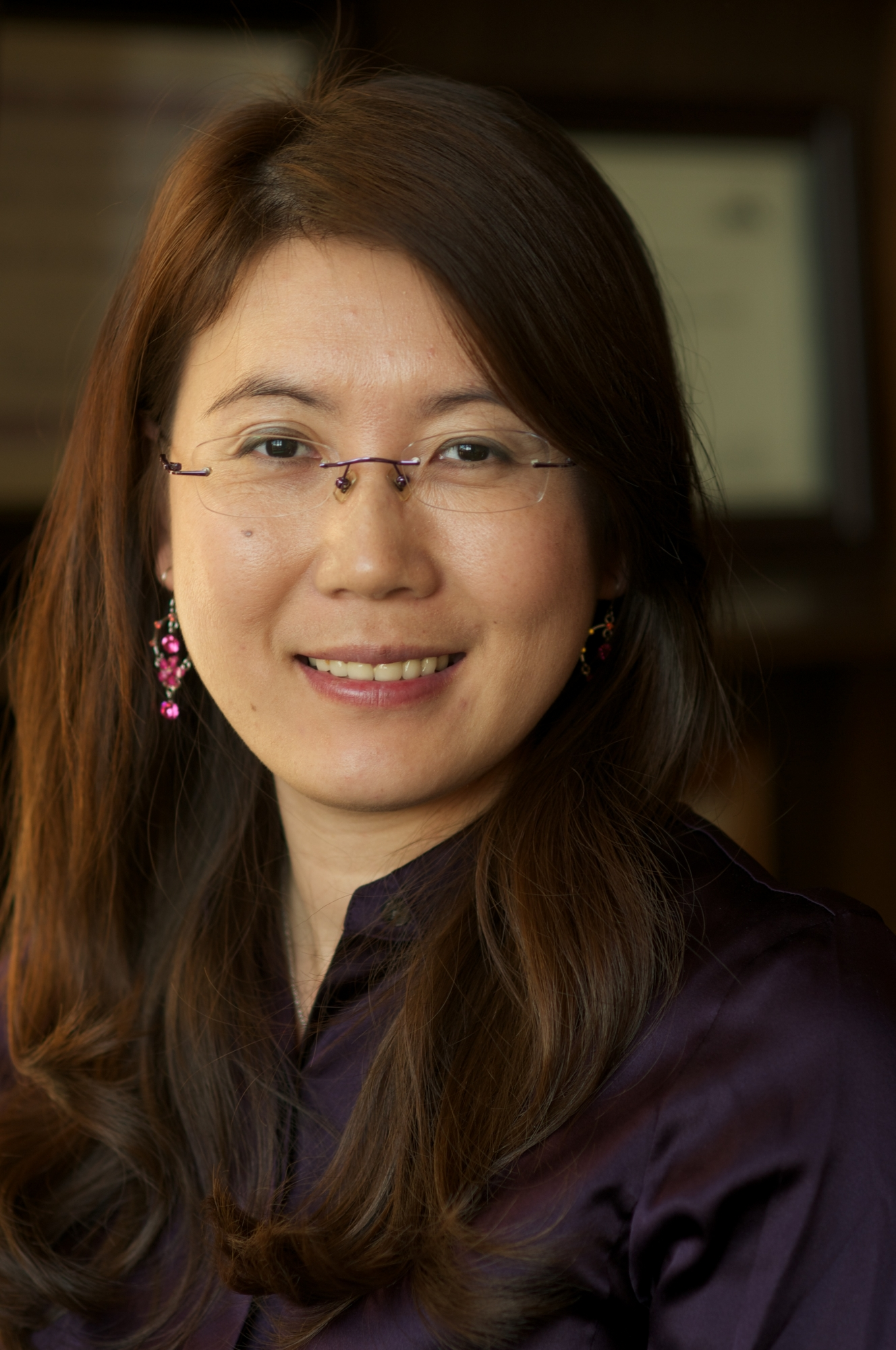 Photo of Professor Lijie Grace Zheng