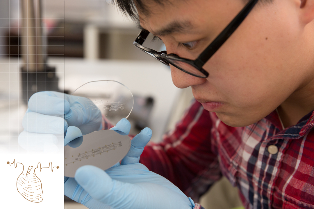 Photo of biomedical engineering student in a lab