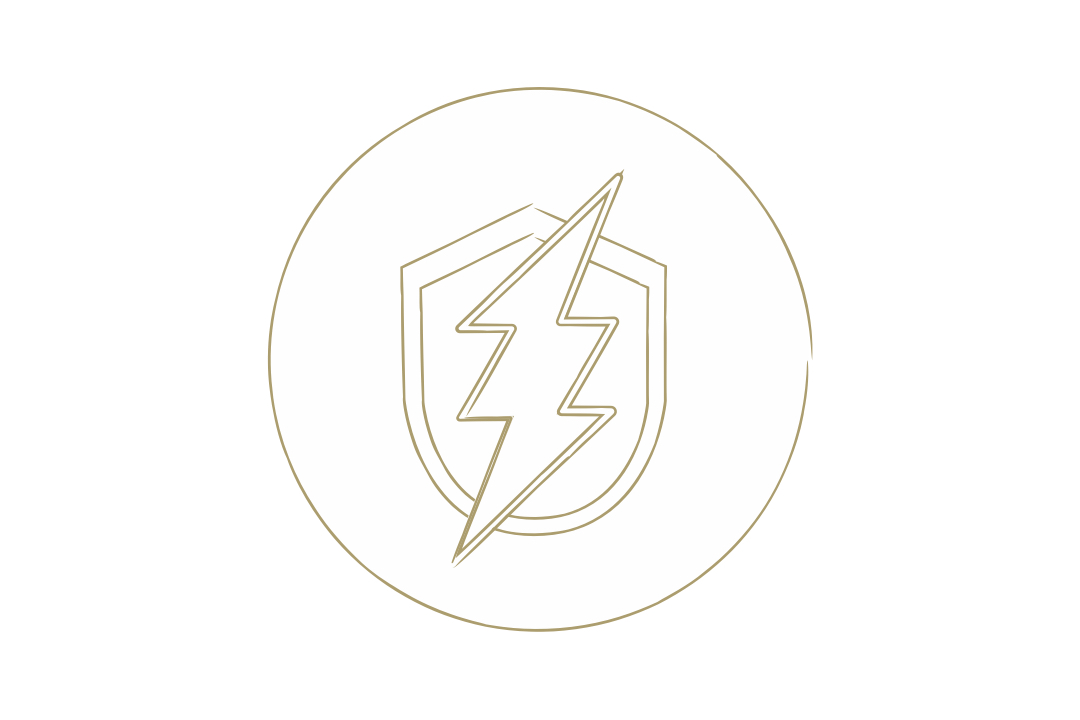 Graphical representation of a shield and electric bolt