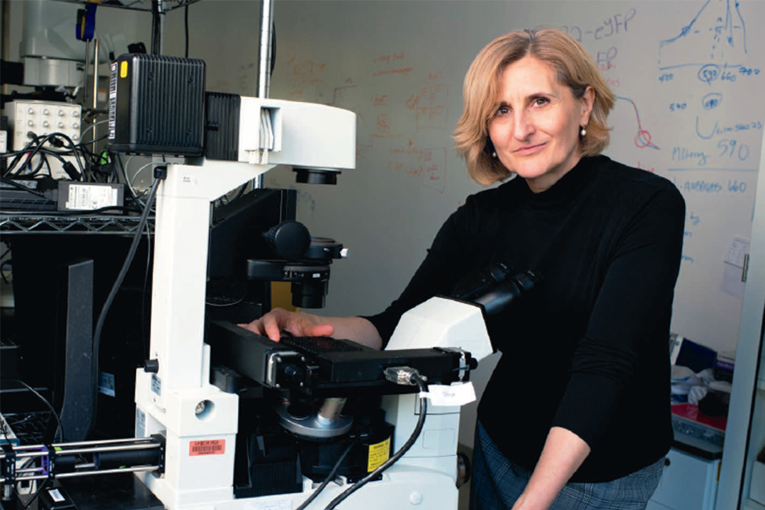 GW Pinpoint; Shedding Light on the matter, Photo of professor in front of microscope